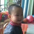 bj99yanyang