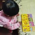 大胖兔爱读书