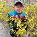 昊昊的春天
